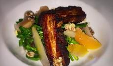 Pork belly special appetizer - 121 Fulton Street, FiDi